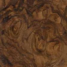 Walnut Burl Peel N Stick Veneer